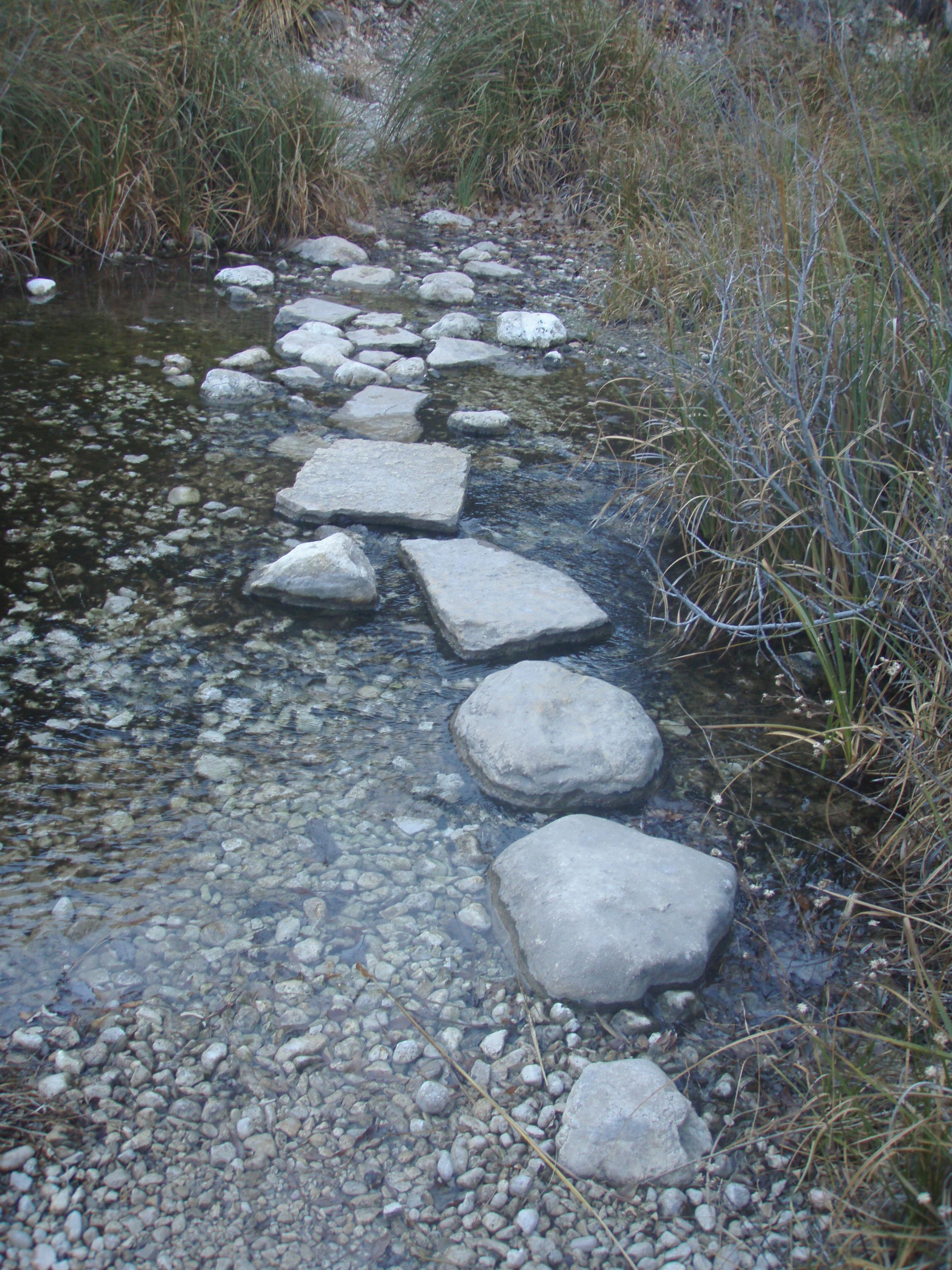 Zee Trail, Twas Wet