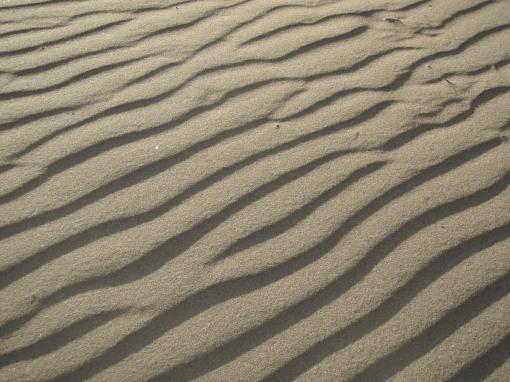 Nature's optical illusion