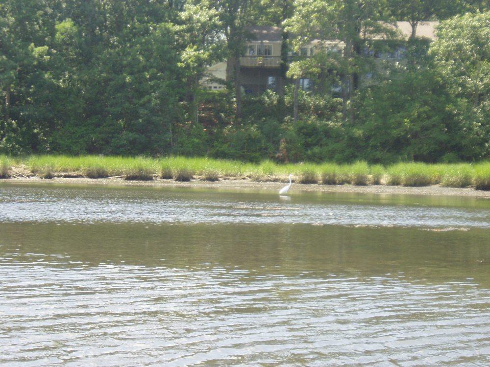 Kayaking Point Judith Pond (5/6)