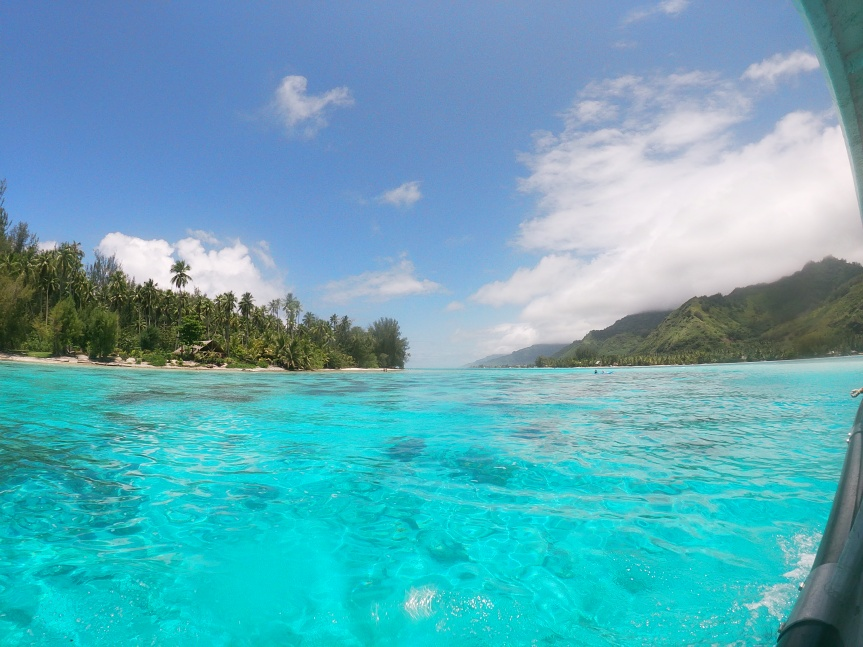 Moment of Underwater Zen: SnorkelingTahiti